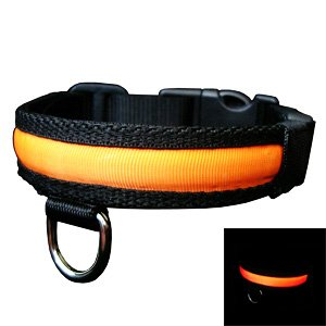 4-Mode L.E.D. Illuminated (Light-Up, Glowing, Flashing) Nighttime Safety Collar for Dogs – Neon Orange, My Pet Supplies