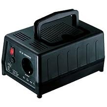 VCT 300 Watt Step Up Voltage Converter Transformer for 110/120 Volt to 220/240 Volt Conversion