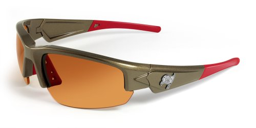 NFL Tampa Bay Buccaneers Dynasty Sunglasses ()