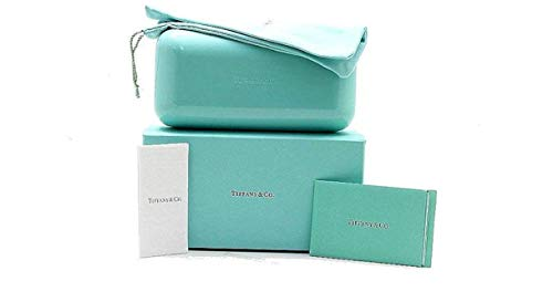 Tiffany & Co. Large Sunglass Case and ()