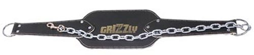 Grizzly Fitness Power Systems Leather Dip and Pull-Up Belt for Adding Weight to Strength Training Exercises, Leather and Steel Chain (65182)