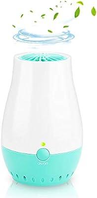 eBerry generador de ozono portátil, purificador de aire para coche ...