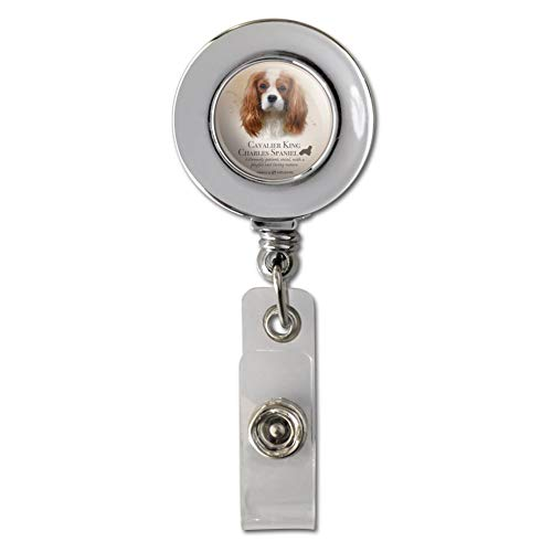 (Cavalier King Charles Spaniel Dog Breed Retractable Reel Chrome Badge ID Card Holder Clip)