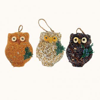 Mr. Bird 3-Pack Ollie Owl Bird Seed Ornaments (Bird Seed Christmas Ornaments)