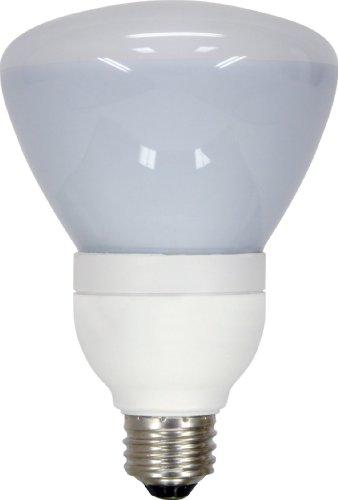 GE Lighting 66664 550 Lumen Floodlight