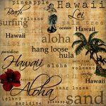 Scrapbook Customs Hawaiian Words Right 12'' x 12'' Scrapbook Paper - 1 Sheet (34272)