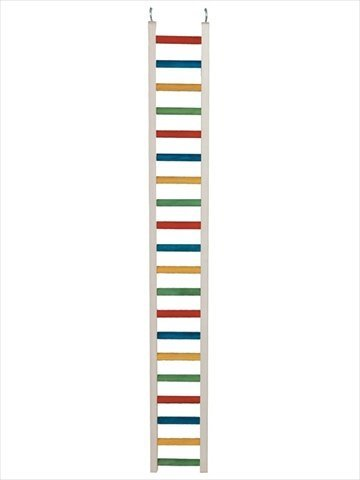 Paradise Parrot Ladder Pet Toy, 48-Inch Long