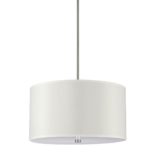 Sea Gull Lighting 65262-962 Dayna Shade Four-Light Pendant Hanging Modern Light Fixture, Brushed Nickel Finish