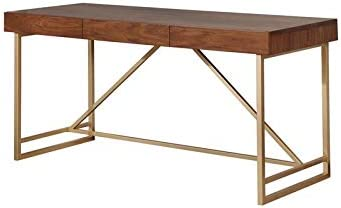 Furniture of America Teviot Contemporary Wood Writing Desk