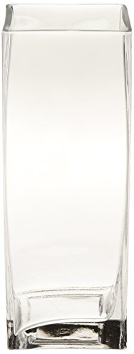 Vase 8 Square (WGV Clear Square Bud Block Glass Vase, 3 by 8-Inch)