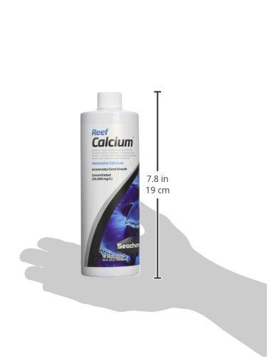 Galleon fin mox forte 500mg 100 capsules for fish for Fish mox amazon