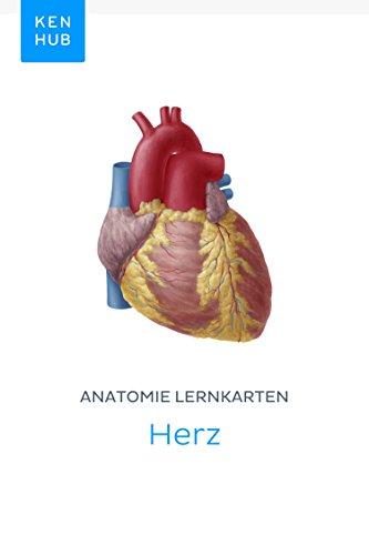 Anatomie Lernkarten: Herz: Lerne alle Organe, Arterien, Venen und ...