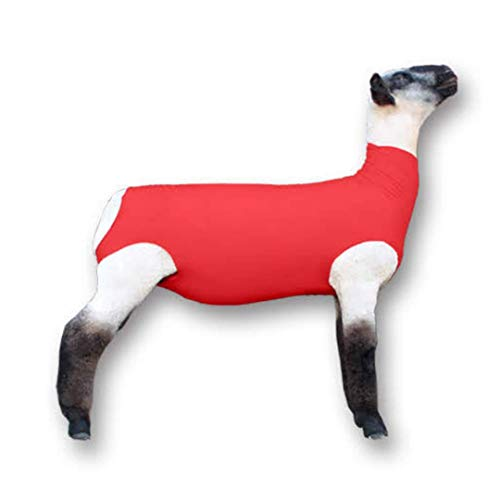 Show Pro Red Spandex Lamb Tube for Show Sheep & Lamb - Show Livestock Supplies: Sheep Covers & Blankets (Large)