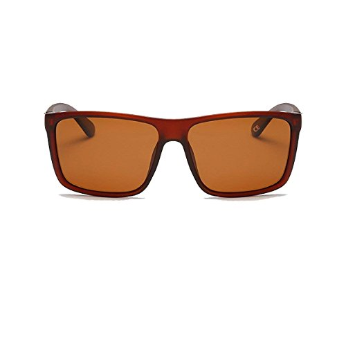de Brown Homme Lens Bolara Lunettes Frame Brown soleil With p6qxx5tw0H