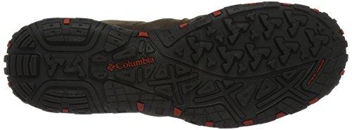 Columbia Woodburn Plus, Botas de Senderismo para Hombre Marrón (Cordovan/gypsy 231)