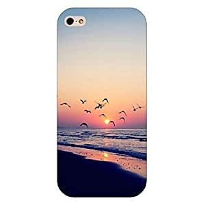 QHY Gulls in the Sunset Pattern Back Case for iPhone5/5S