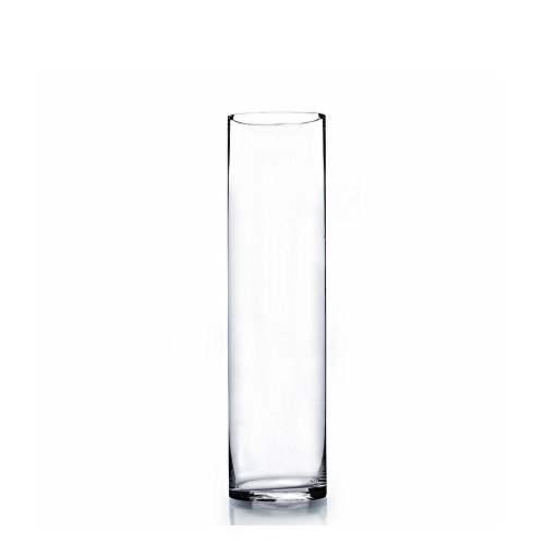 12 Pack WGV 4 x 14 Cylinder Vase with WGV Glass Cleaning Cloth
