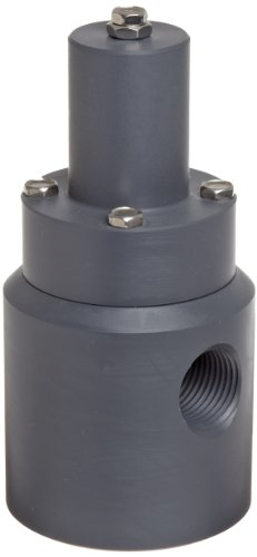 Plast-O-Matic RVD Series PVC Relief Valve for Low Through High Pressure, For Corrosive and Ultra-Pure Liquids, 5-100 psi Pressure Range, 1/2'' NPT Female by Plast-O-Matic