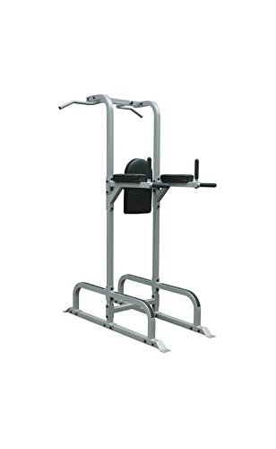 Chin Dip and Ab Station in Silver and Black by Athletic Connection