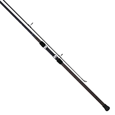 Tica UEHA Series Surf Spinning Fishing Rod