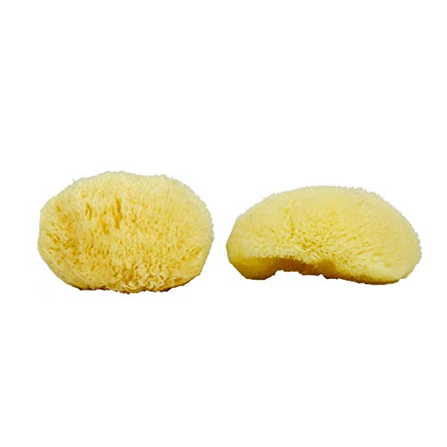 """Neptune Natural Sea Soft Silk Sponge - for Cosmetic Use, Facial and Body Cleansing 2pk, 3"""""""