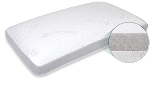 Blu Sleep Products Aqua Gel Pillow Standard