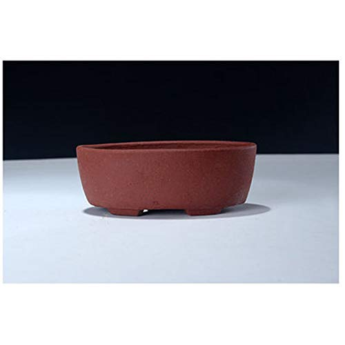 Best Quality - Flower Pots & Planters - Oval Succulent Plants Pot Flowerpot Chinese Yixing Zisha Mame Shohin Bonsai Flower Pot - by SeedWorld - 1 PCs ()