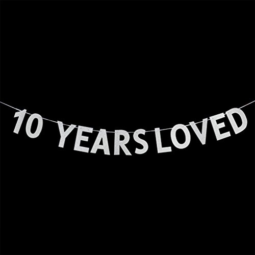 10 YEARS LOVED Banner - 10th Birthday / Wedding Anniversary Party Decorations Photo Props - Silver