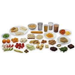 Nasco Life/form Food Replica Package Number 4 - Health Education Education Program - WA32207 by Life/form