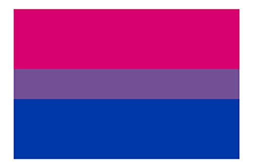 5 Wide Vibrant Color Vinyl Decal LGBT Rights Support Pride Symbol Applicable Pun BisexualFlag Bi Bisexual Flag
