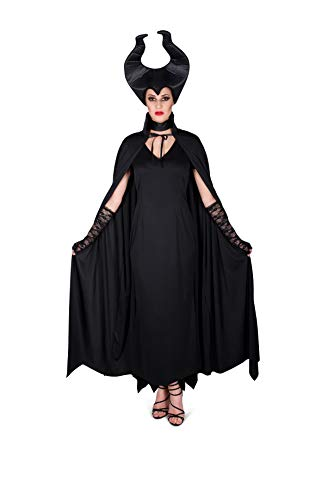 Easy Fairy Tale Halloween Costumes (Women's Fairytale Witch Costume, for Halloween Party Accessory, Large)