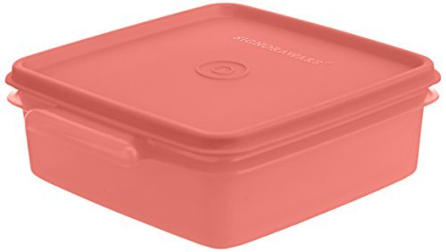 Signoraware Easy-to-Carry Small Box, 850ml, Set of 1
