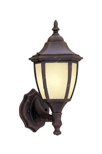 Designers Fountain ES2462-AM-AG Value Collection Wall Lanterns, Autumn Gold