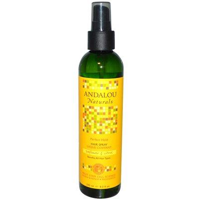 Andalou Naturals - Andalou Naturals Perfect Hold Hair Spray