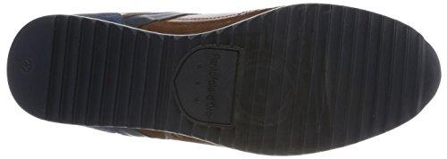 Matera D'oro Shell Sneaker Uomo tortoise Pantofola Low Marrone 05dzWxqw
