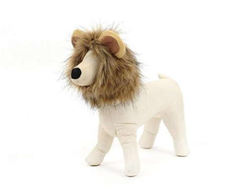 [Lovely summer Lion Mane Wig Cat Costume and Small Dog Costume with Complimentary Feathered Catnip Toy - Pet Costumes] (Lion Costume For Small Dogs)