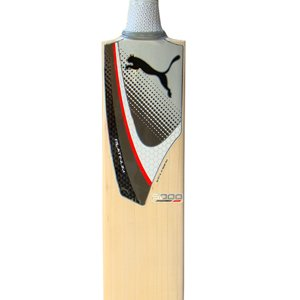 Puma Platinum 5000 English Willow Cricket Bat, Short Handle by PUMA