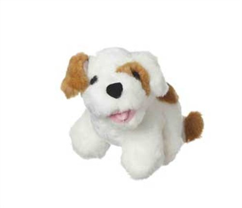 Multipet Look Who's Talking Dog Dog Toy, Colors May Vary
