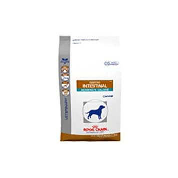 Amazon Com Royal Canin Gastrointestinal Moderate Calorie Dry Dog