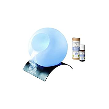 Diffuseur d huiles essentielles - Brumisateur support en métal + 1 huiles  bio Eucalyptus de e0f97486a273