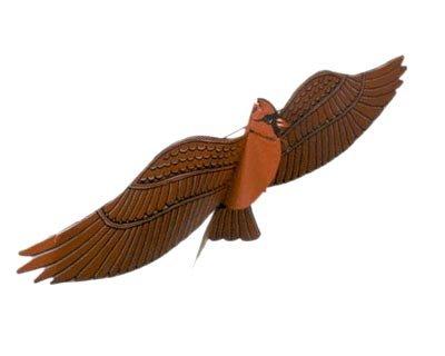 Jackite Assembled Cardinal Bird Kite, Wind Sock