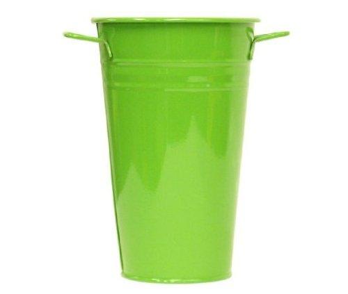 (Houston International 8295E AG 6.5-Inch Steel Vase, Apple Green)
