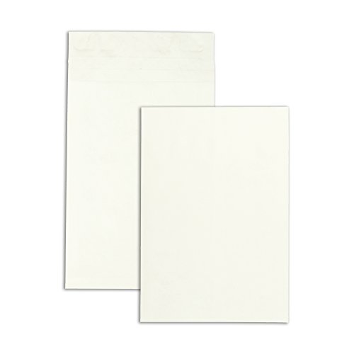 Plain End White Envelopes Expansion (Survivor R4290 Tyvek Expansion Mailer, 12 x 16 x 2, White, 18lb (Case of 100))