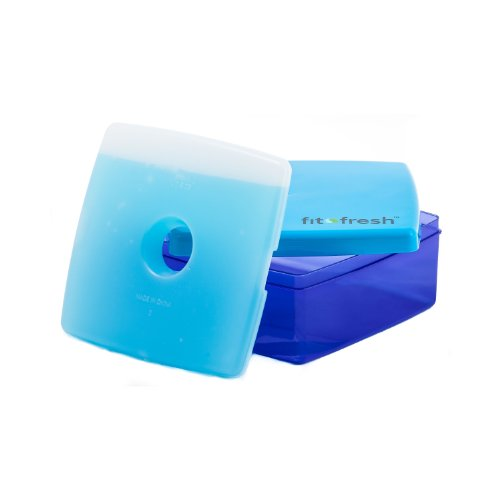 fit-fresh-kids-lunch-sandwich-pod-with-removable-ice-pack-bpa-free-leftover-container-275-cup-capaci