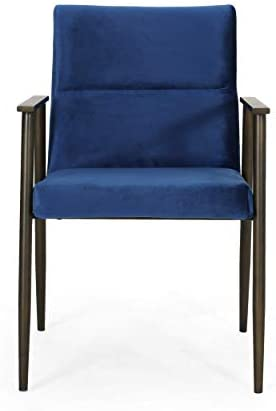 Christopher Knight Home Doris Modern Glam Velvet Dining Arm Chair