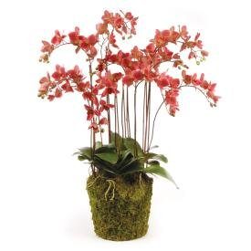 napa-home-garden-di1230p-conservatory-phalaenopsis-pink-drop-in-plant-36-in