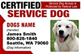 Dean and Tyler CERTIFIED SERVICE DOG ID Badge – 1 Dog's Custom ID Badge – Design#5- Horizontal., My Pet Supplies