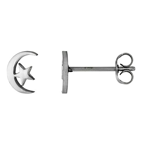 Stainless Steel Tiny Moon Earrings