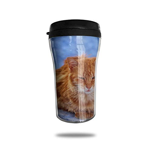 (FTRGRAFE Orange Tabby Cat Rocks Travel Coffee Mug 3D Printed Portable Vacuum Cup,Insulated Tea Cup Water Bottle Tumblers for Drinking with Lid 8.54 Oz (250 Ml))