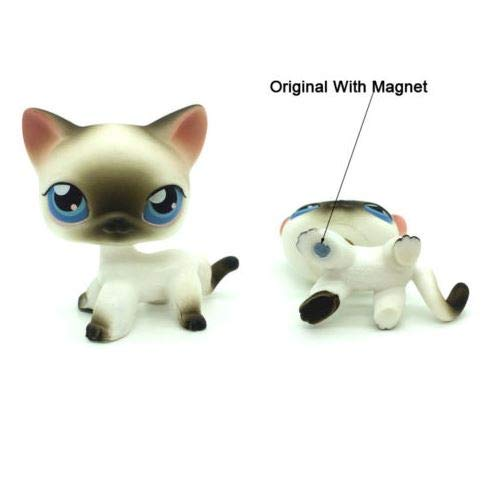 Littlest Pet Shop LPS Toys #5 Black White Short Hair Kitten Cat with Blue Eyes (Black And White Great Dane With Blue Eyes)